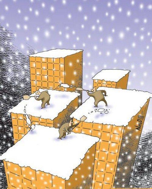 کارتون/ بام و برف