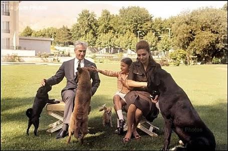 عکس/ سگبازی شاه و فرح