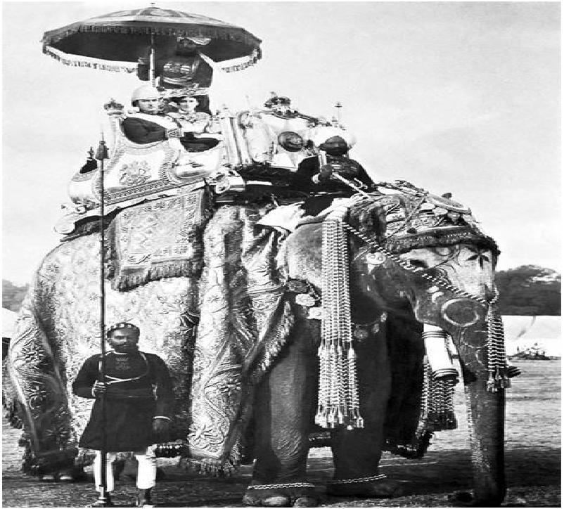 لرد فیل سوار+عکس