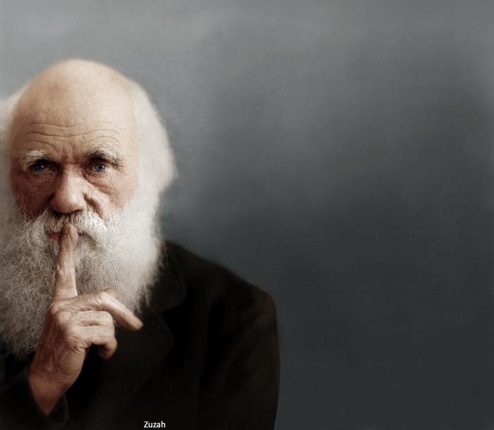 پرتره استودیویی از چارلز داروین. تاریخ عکس نامعلوم