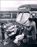 حمل و نقل کودکان در نیوزیلند/عکس