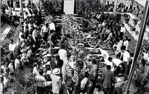 قیام سی تیر؛ تبلور اتحاد مردم و روحانیت