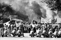 روایت یک قیام مهجور