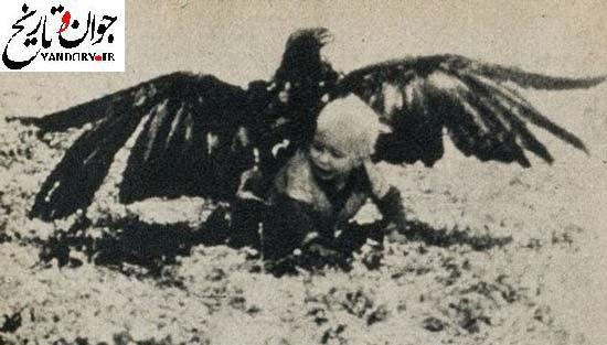 شکار پسر بچه ای 3 ساله توسط عقاب! /عکس