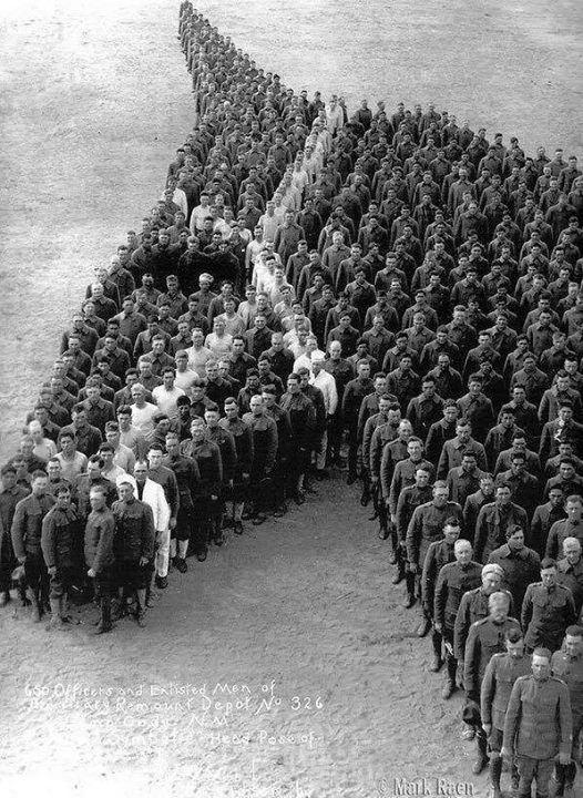 ادای احترام سربازان جنگ جهانی اول به اسبها