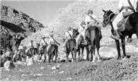 اعدام مخالف محمدرضا پهلوی