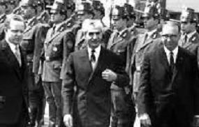 فدائیان پوشالی محمدرضا پهلوی