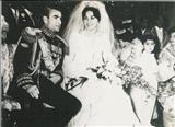 درخواست هزینه مصدومان مراسم تولد شاه