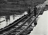 مخالفت قطعی احمد شاه با درخواست کشیدن راه آهن شمال به جنوب