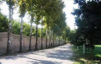 باغهایی به سبک باغهای اروپا