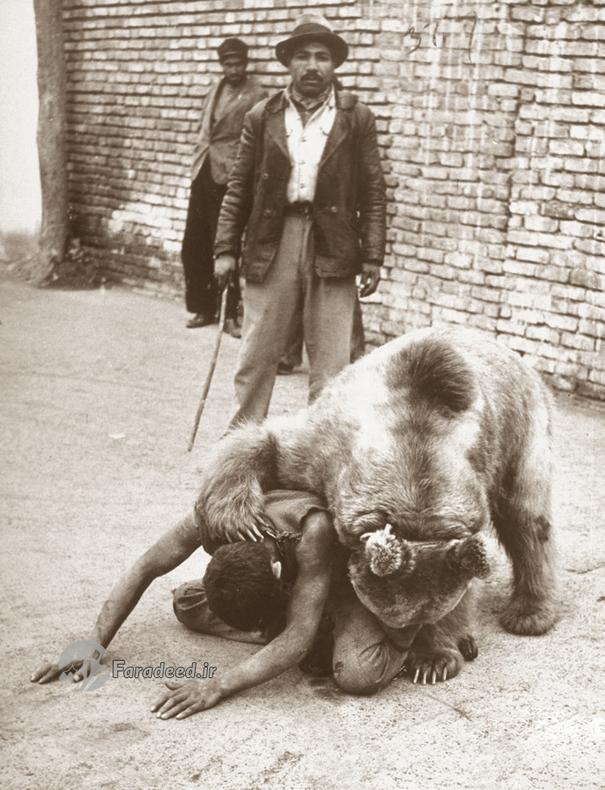 تصاویر/ معرکهگیری با خرس در تهران قدیم
