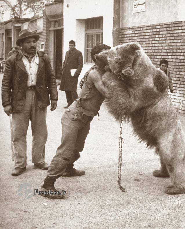 خرس و معرکه گیری