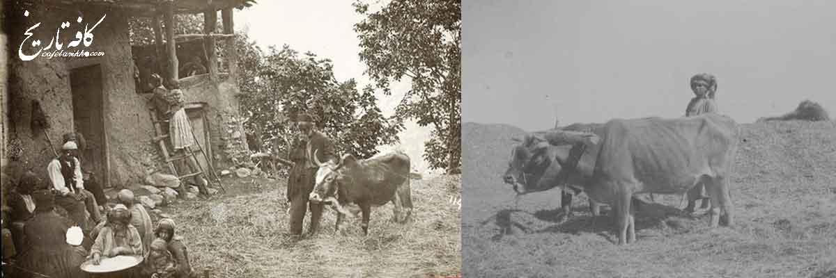 مقایسه روستاییان ایرانی و اروپایی توسط جهانگرد فرانسوی