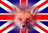 کینه انگلیسیها از قیام عشایر جنوب