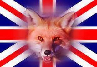 تحت فشار قرار دادن دولت ایران از جانب انگلستان