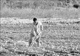 توهین به کشاورزان در زمان اجرای اصلاحات ارضی